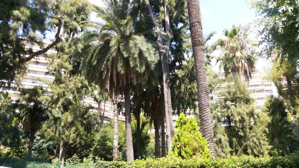 9202-Cannes Magdy 2 bedrooms   (1)